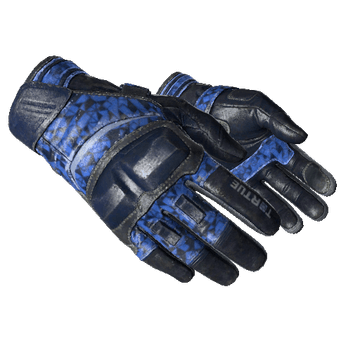 ★ Moto Gloves | Polygon