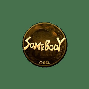 Sticker | somebody (Gold) | Katowice 2019