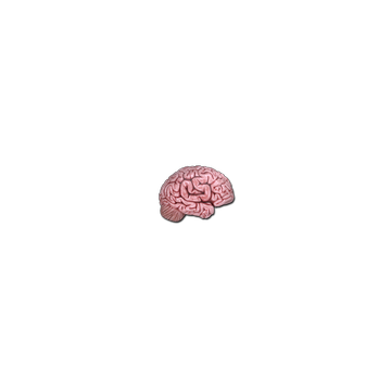 Sticker CS On The Mind