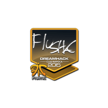 Sticker flusha | Cluj-Napoca 2015