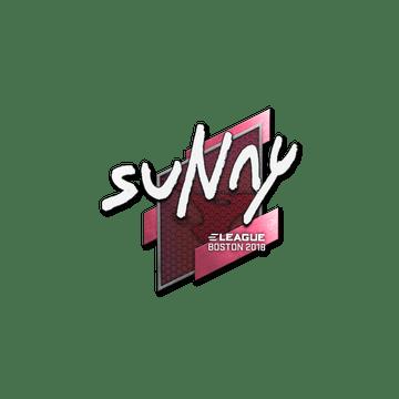 Sticker | suNny | Boston 2018