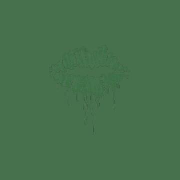 Sealed Graffiti   Kiss (Jungle Green)