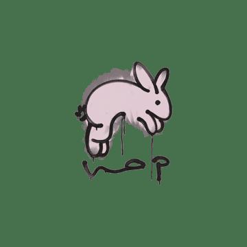 Sealed Graffiti | Hop (War Pig Pink)
