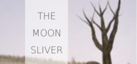 The Moon Sliver -