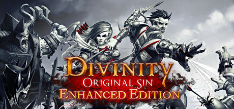 Divinity: Original Sin Enhanced Edition -