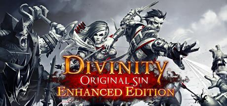 Divinity: Original Sin Enhanced Edition -
